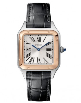 Fake Cartier Santos Dumont Silver Dial Unisex Watch W2SA0012