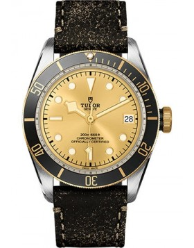 Tudor Heritage Black Bay Champagne Dial Mens Watch Replica